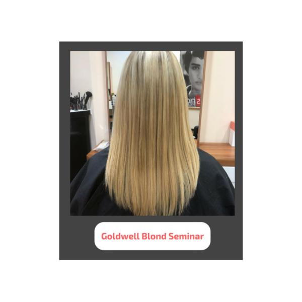 goldwell blond - Seminare für Friseure