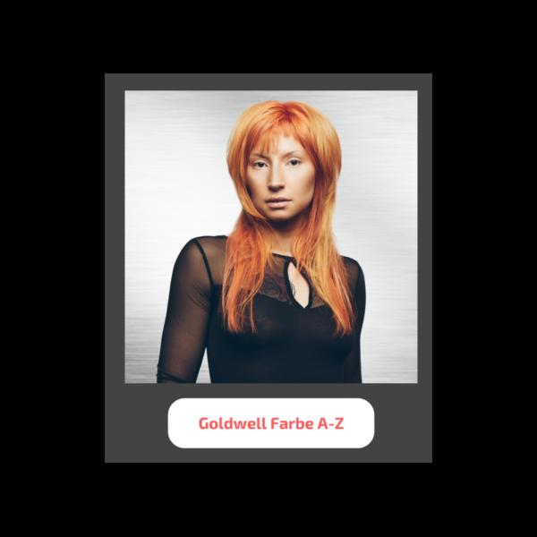 goldwell farbe seminar - Seminare für Friseure