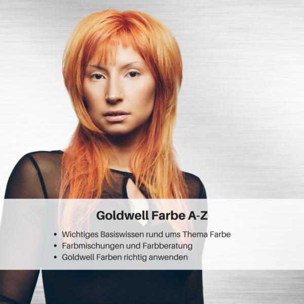Weiterbildung Friseur, Friseur Weiterbildung, Weiterbildung für Friseure Seminare für Goldwell Farbe A-Z Seminar trend hair #hairlichkeiten